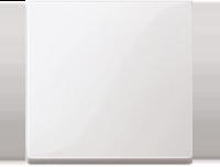 Merten Выключатель одноклавишный (полярно белый) System M